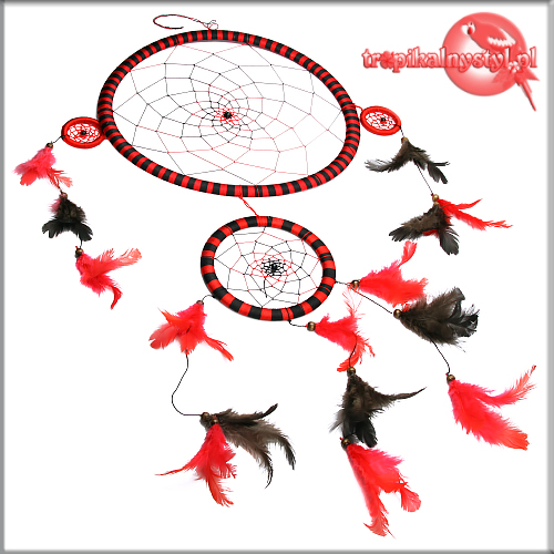 lapacz snow dream catcher